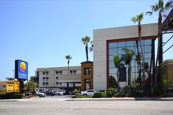 Comfort inn suites lax airport for Dog hotels in los angeles