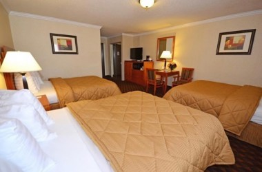 comfort-inn-suites-lax-airport-bedroom-2